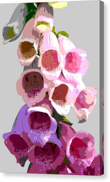 Foxglove Canvas Print