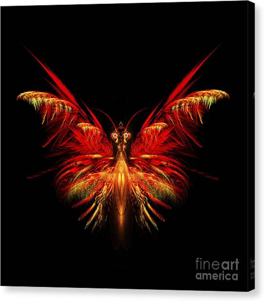 Apophysis Canvas Print - Fractal Butterfly by John Edwards