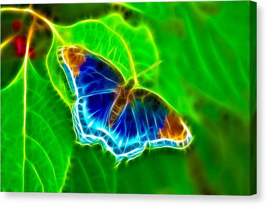 Fractal Butterfly Canvas Print by Rich Leighton