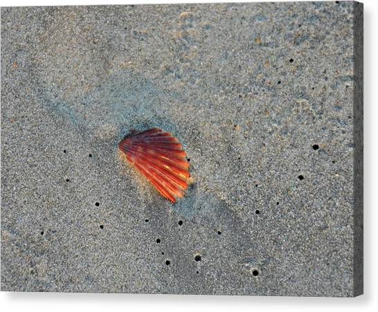 Fiery Fracture Canvas Print by JAMART Photography