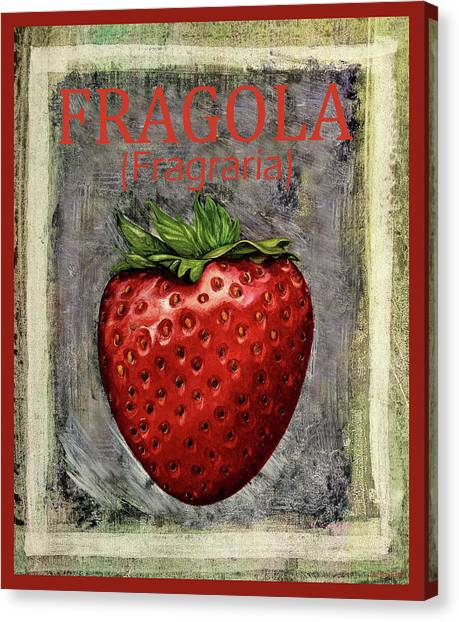 Strawberries Canvas Print - Fragraria by Guido Borelli