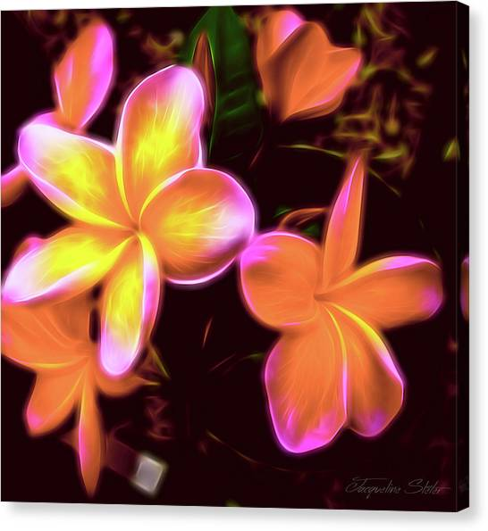Frangipanis On The Glow Canvas Print