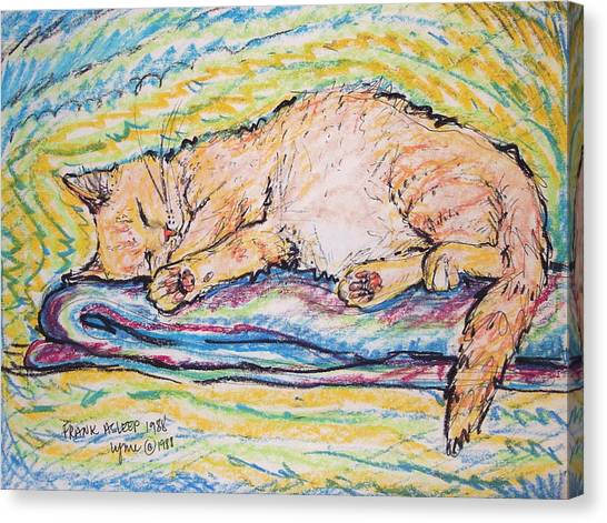 Frank Asleep Canvas Print