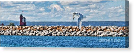 Free Flight Canvas Print