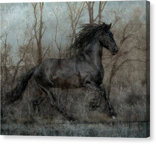 Black Stallion Canvas Print - Free II by Jean Hildebrant