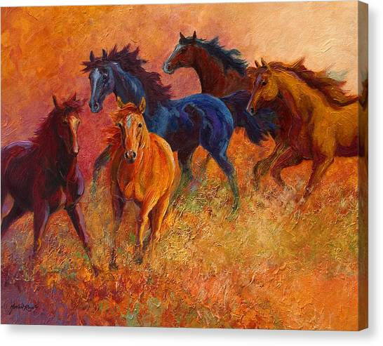 Rodeos Canvas Print - Free Range - Wild Horses by Marion Rose