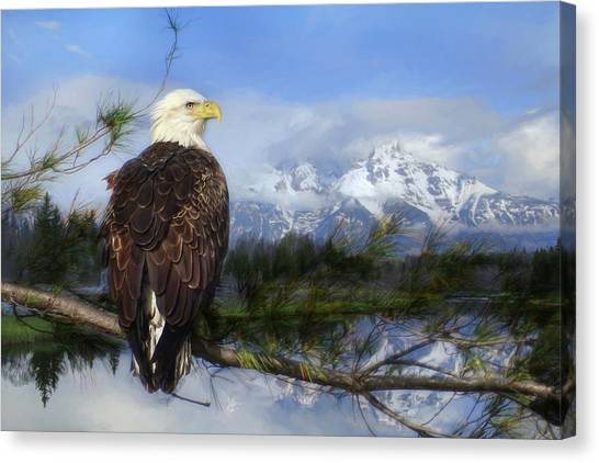 Eagle Scout Canvas Print - Free Spirit by Lori Deiter