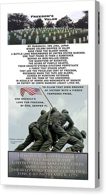 Freedom's Valor Canvas Print by Patrick J Maloney