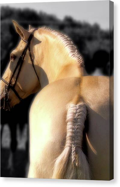 French Braid Canvas Print by JAMART Photography