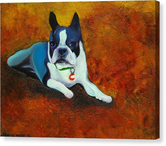 French Bull Dogs Canvas Print - French Bulldog by Adrienne Davis