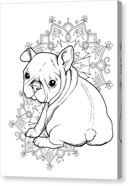 French Bull Dogs Canvas Print - French Bulldog Puppy by Cindy Elsharouni