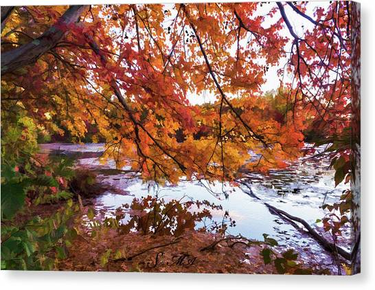 French Creek 15-107 Canvas Print