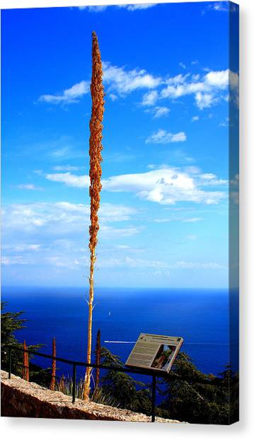 French Riviera Canvas Print