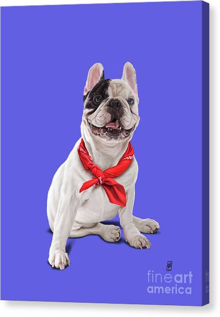 Canvas Print featuring the digital art Frenchie Colour by Rob Snow