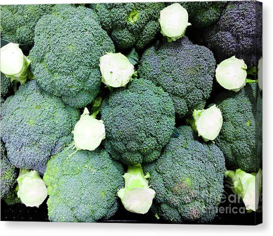 Broccoli Canvas Print - Fresh Broccoli Background by Tom Gowanlock