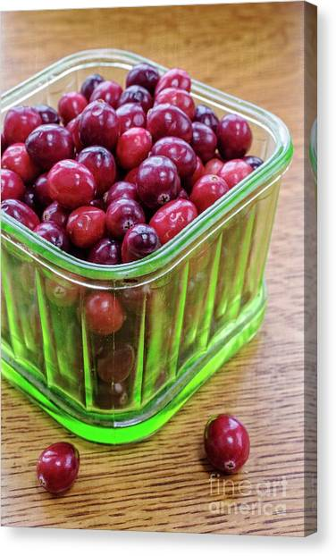 Cranberry Sauce Canvas Print - Fresh Cape Cod Cranberries by Edward Fielding