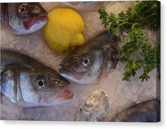 Fresh Fish Canvas Print
