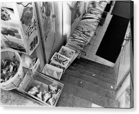 Fresh Fish  Canvas Print