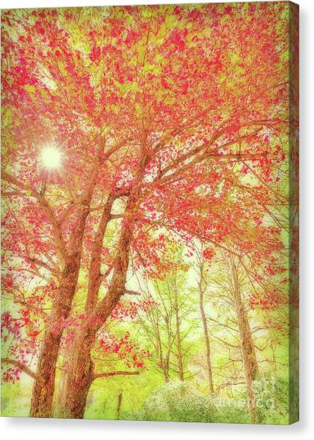 Fresh Morning Canvas Print