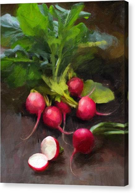 Vegetables Canvas Print - Fresh Radishes by Robert Papp