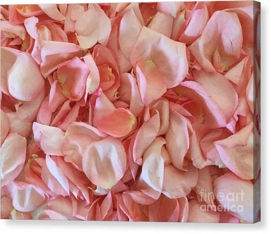 Fresh Rose Petals Canvas Print