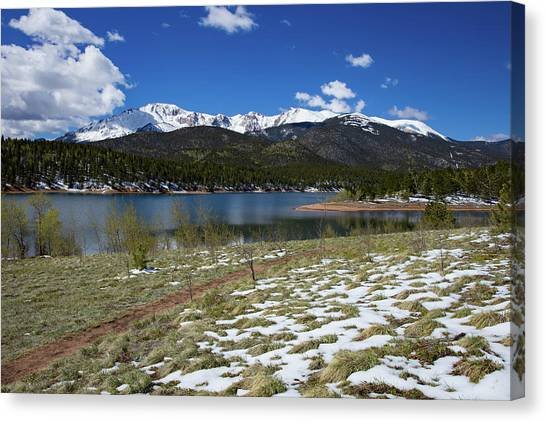 Treeline Canvas Print - Fresh Snow Along The Banks Of Crystal Creek Reservoir With Pikes by Bridget Calip