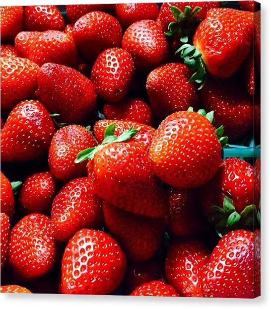 Berries Canvas Print - Fresh Strawberries Oxnard, Ca .. Little by Scott Pellegrin