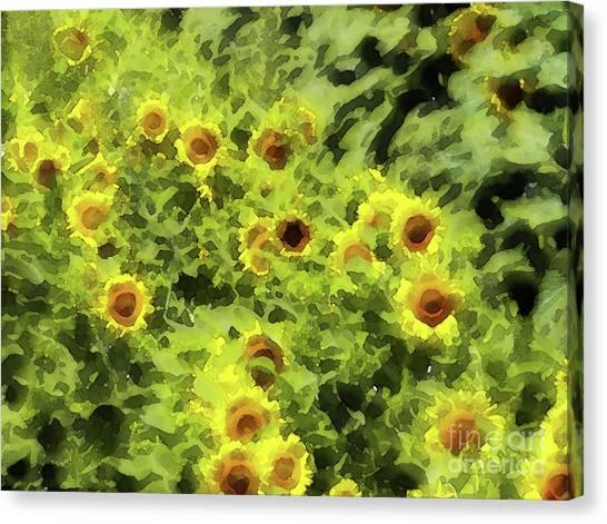 Fresh Sunflowers Canvas Print