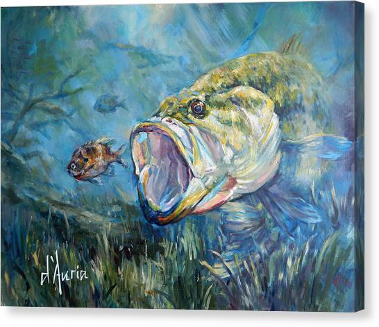 Freshwater Canvas Print - Freshwater by Tom Dauria