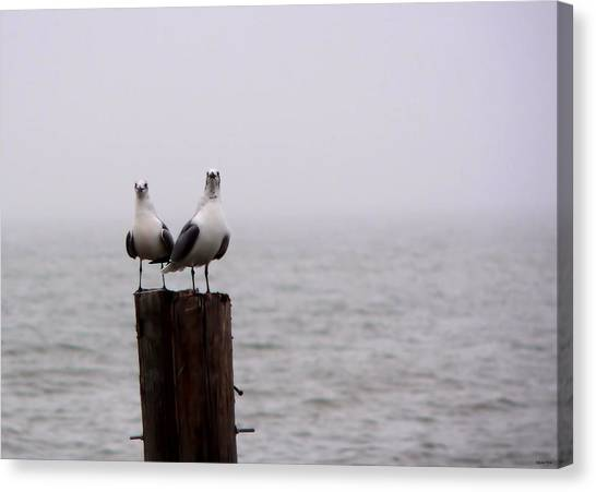 Friends In The Fog Canvas Print