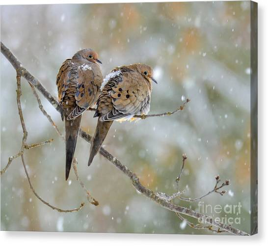 Friends Through The Storm Canvas Print