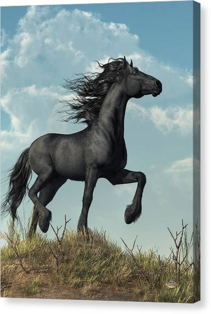 Black Stallion Canvas Print - Friesian by Daniel Eskridge