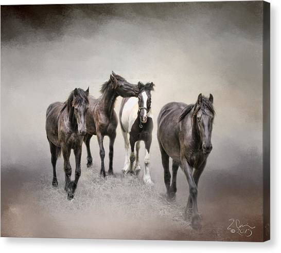 Friesian Horses The Boys And Baby Sister Canvas Print