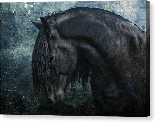 Black Stallion Canvas Print - Frisian Stallion by Joachim G Pinkawa