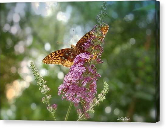 Fritillary Canvas Print by Molly Dean