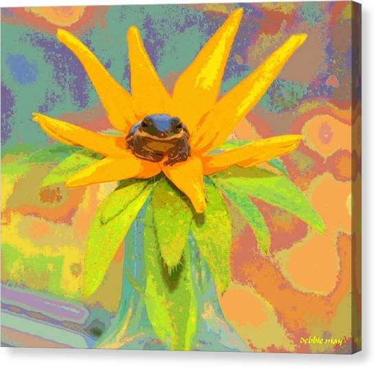 Frog A Lilly 2  - Photos Bydebbiemay Canvas Print by Debbie May
