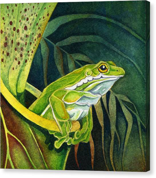 Frog In Pitcher Plant Canvas Print
