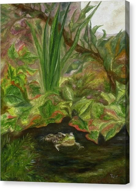 Frog Medicine Canvas Print