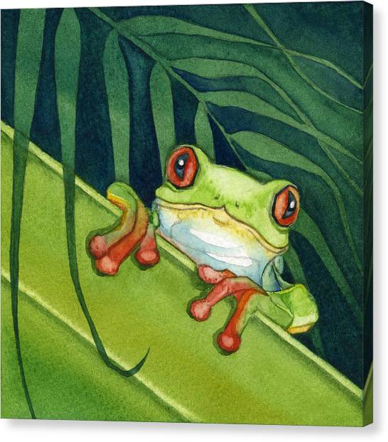 Frog Peek Canvas Print
