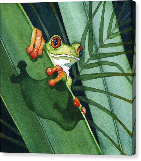 Frog Ready To Leap Canvas Print