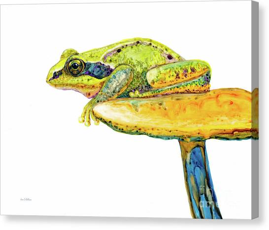 Frog Sitting On A Toad-stool Canvas Print