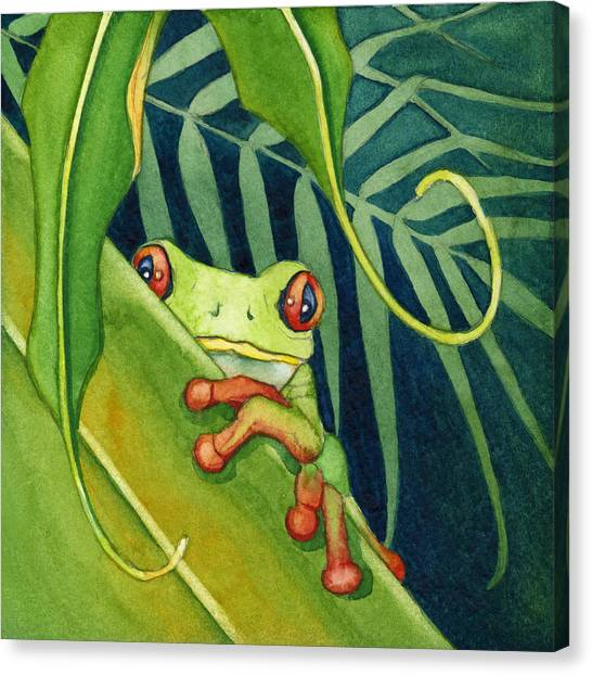 Frog The Timid One Canvas Print