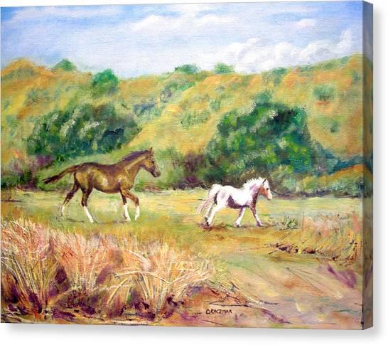Frolic Near Alderbrook Canvas Print by Olga Kaczmar