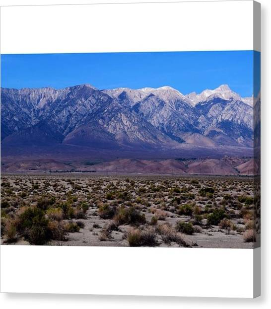 Star Trek Canvas Print - From Desert To Snowy Mountains, Death by Scotty Brown
