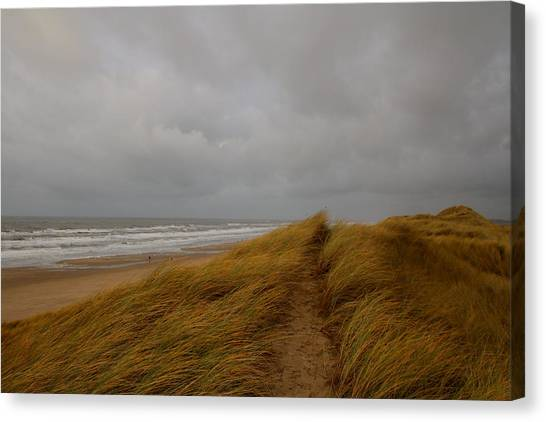 From Dunes To Sea Canvas Print