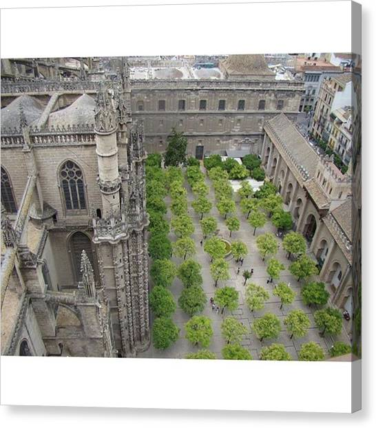 Backpacks Canvas Print - From The Bell Tower In Seville. #spain by K S