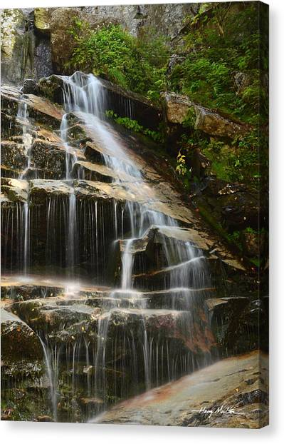 From The Highest Peaks Canvas Print
