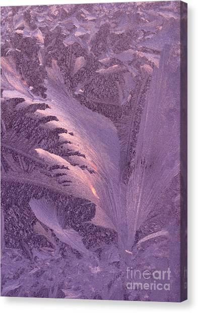Frost Frosty Window Canvas Print