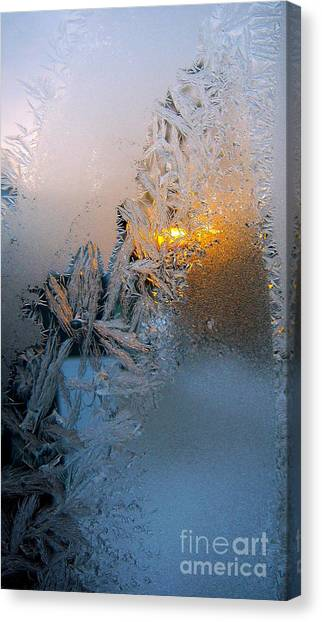 Frost Warning Canvas Print