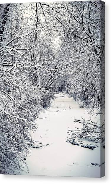 Frosted Feeder Canvas Print